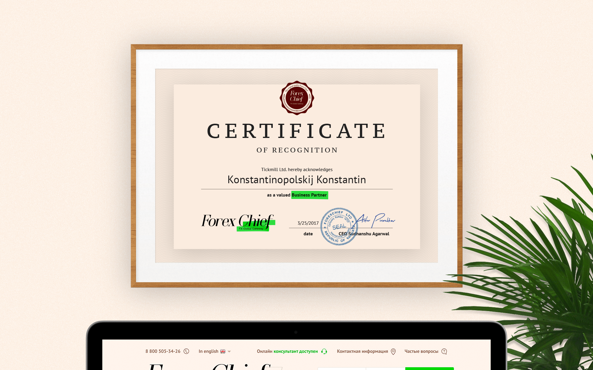 forex certificate
